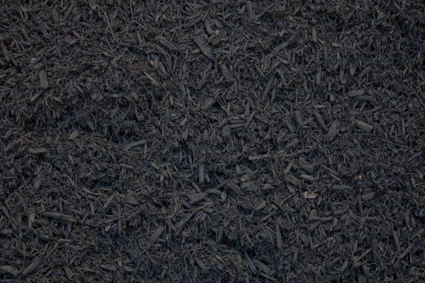 Paillis cèdres noir