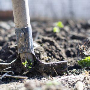 Terreaux - Paillis - Compost